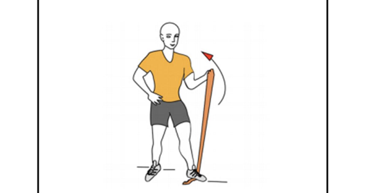 biceps banda elastica